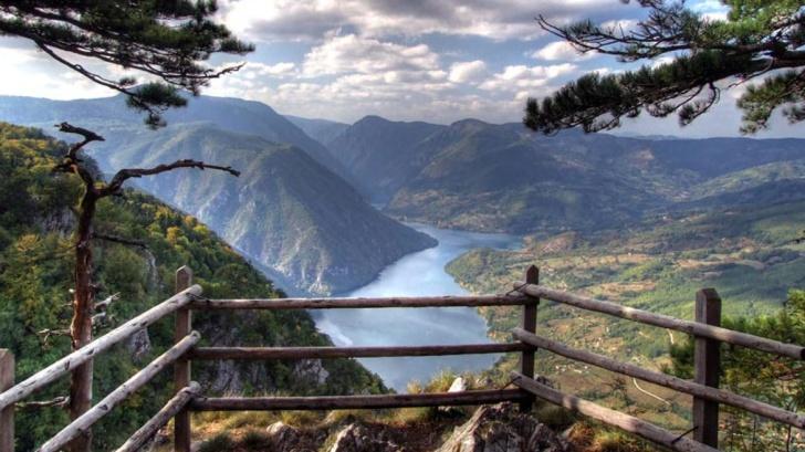 milica-dabovic-tara-planina-mountain-kamp-01